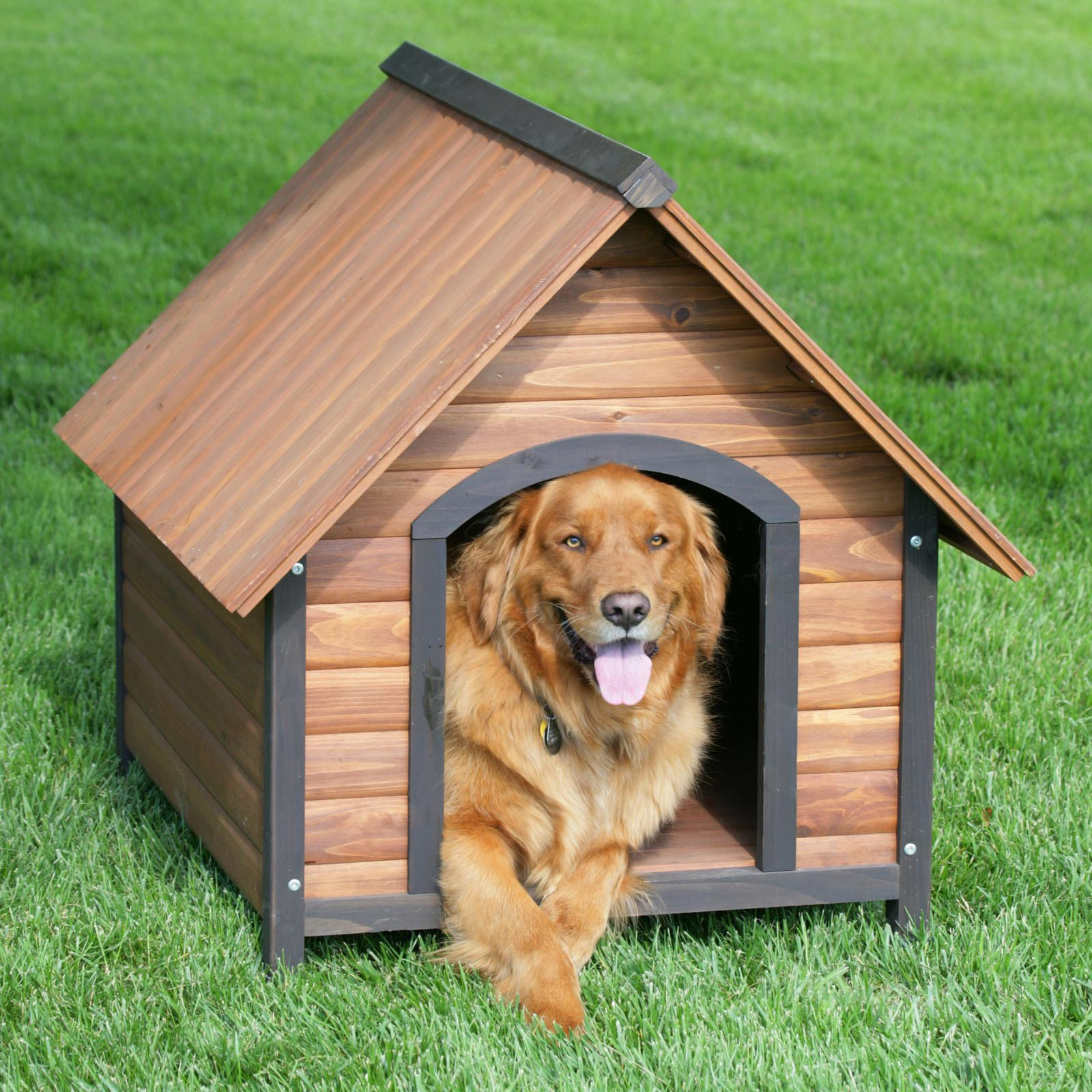 Step by step instruction on how to build a dog house for How to make a house step by step