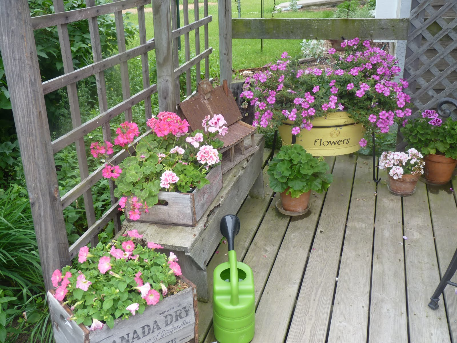 How to decorate your patio with flowers from lowes video ezeliving share this mightylinksfo